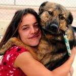 Traumhund Davis